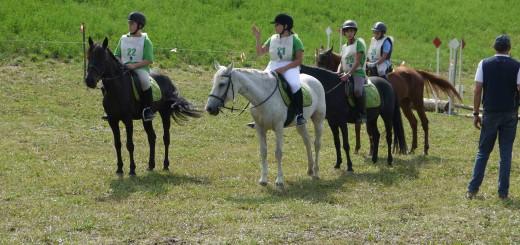 Gara-25-agosto-tre-pony